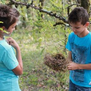 Enfants-avec-nid-oiseau